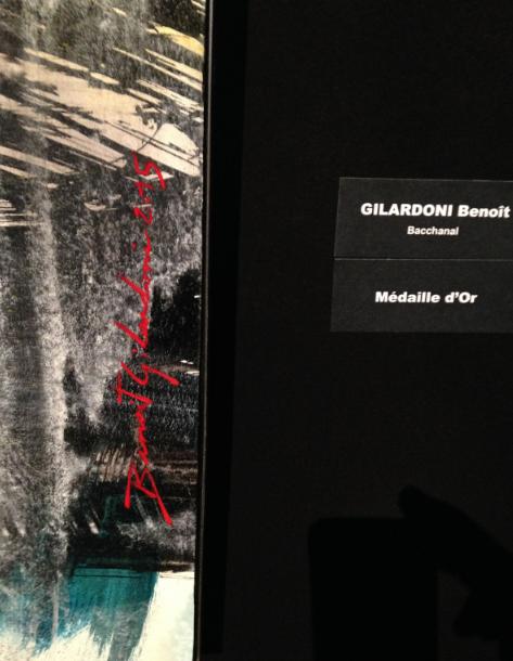 13-benoit gilardoni exposition louvre